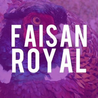 faisan-royal-fleur-de-point-parfum-fragrance-340x340
