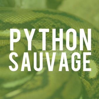 python-sauvage-fleur-de-point-parfum-fragrance-340x340